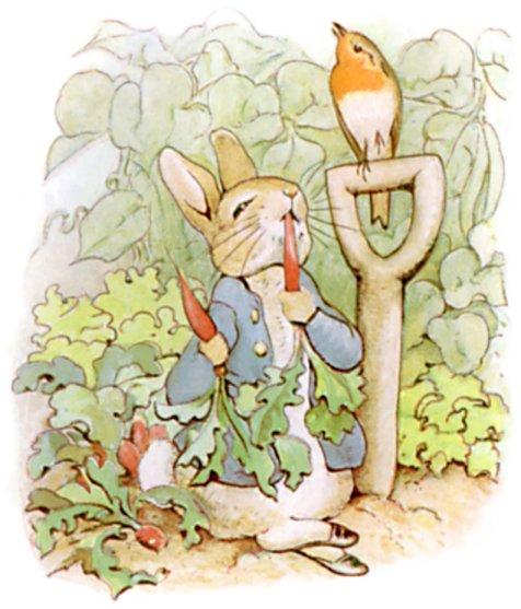 peter-rabbit-1.jpeg