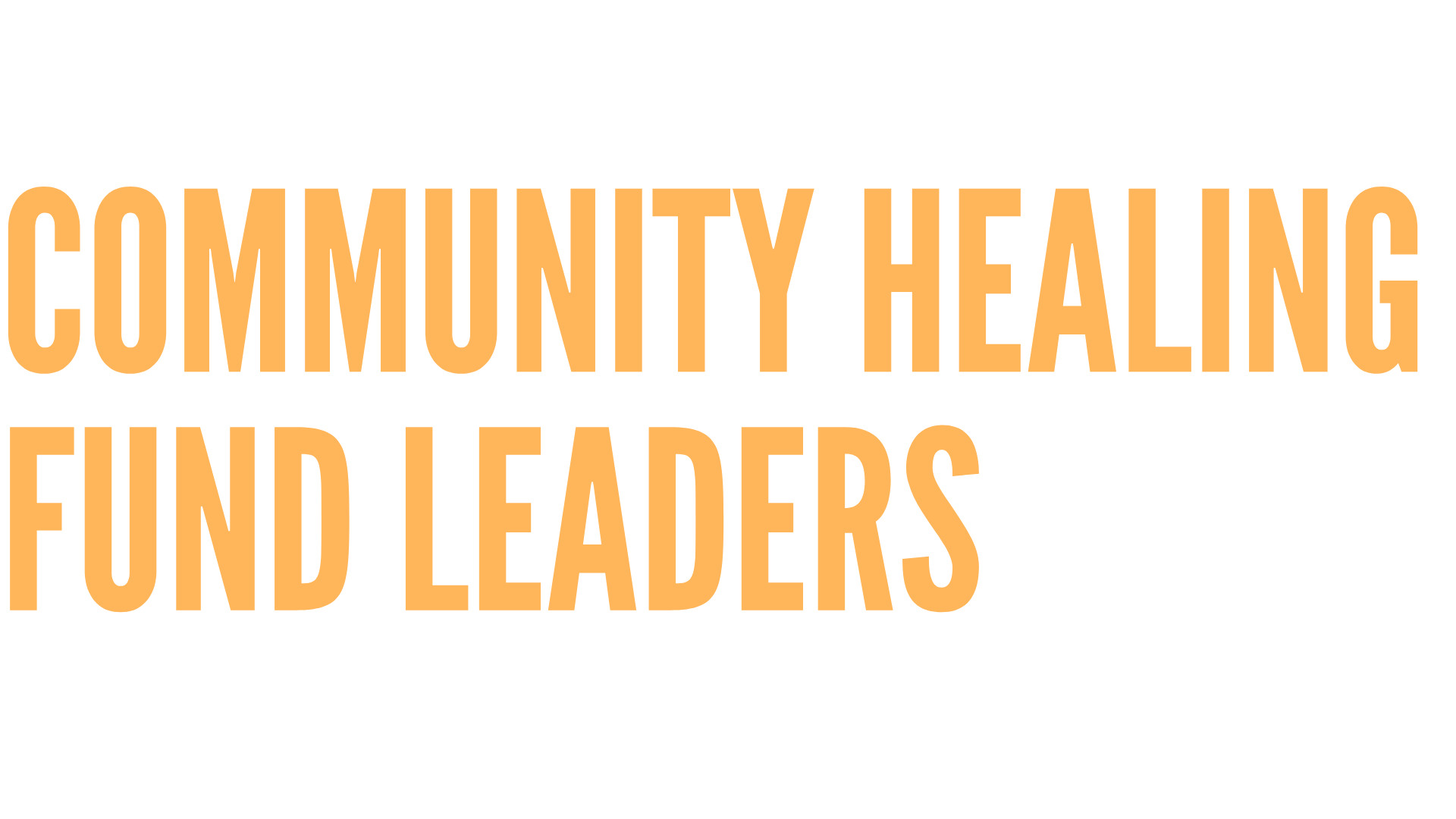 Copy%2020of%2020Community%2020Healing%2020Fund%2020Mailing%2020%20281%2029.png